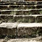 Laiptai į bažnyčią, Darkiemis