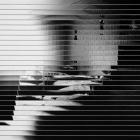 Darius_Vaicekauskas.A_deconstructed_photo_of_Raimundas_Urbonas.II.2011