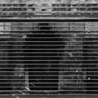 Darius_Vaicekauskas.A_deconstructed_photo_of_Remigijus_Treigys.II.2011