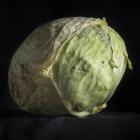 104-Eugenijus-Barzdzius-pelkiu-derlius
