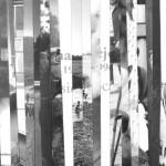 """LFS Klaipėdos skyrius 38-ąjame tarptautiniame fotomenininkų seminare """"Fotografų susitikimai"""" Nidoje"""
