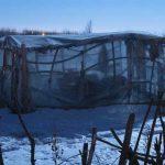 """Eugenijaus Barzdžiaus fotografijų paroda """"Pelkės derlius"""""""